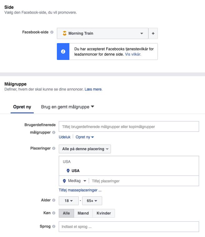 Leadgenereringsannoncering i Facebook Business Manager: Side- og målgruppedefinition