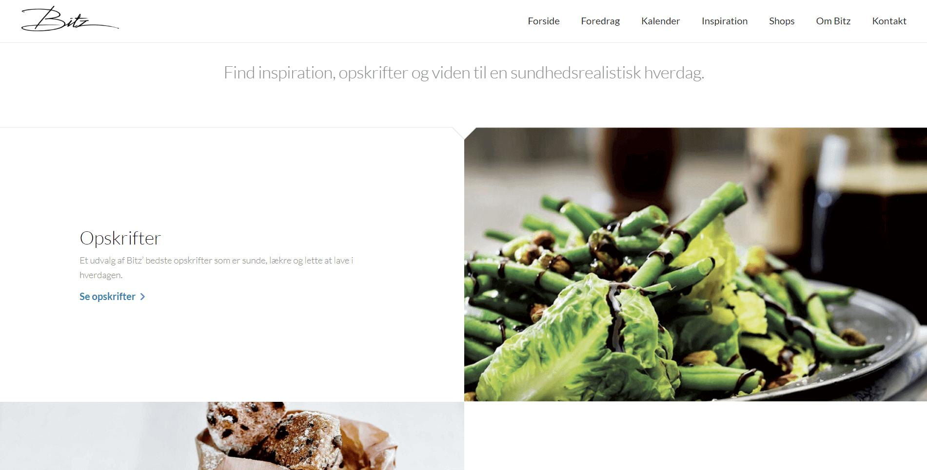 bitz hjemmeside eksempel