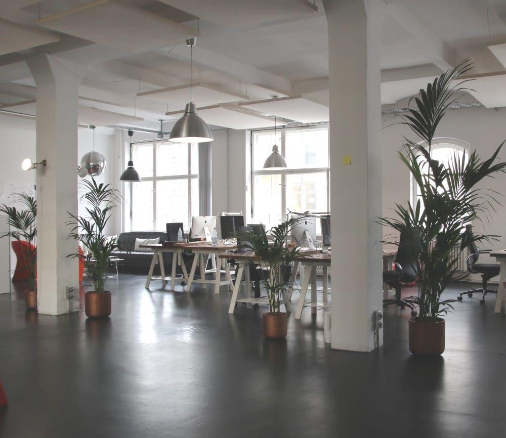 kontor miljø