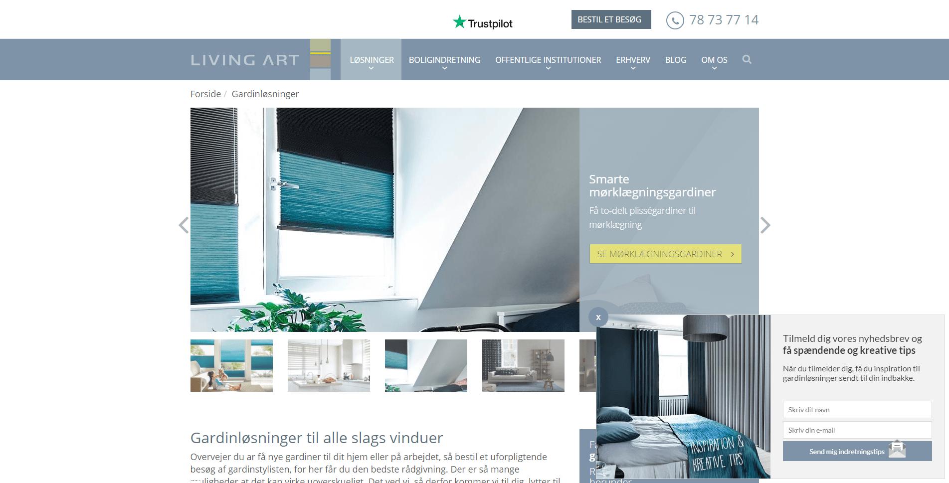 Living art website eksempel