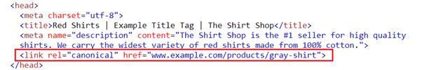 Canonical tag brugt i koden af en webshop